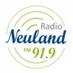 Logo da emissora Radio Neuland 91.9 FM