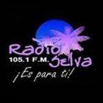 Logo da emissora Radio Selva 105.1 FM