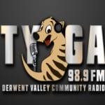 Logo da emissora Radio Tyga 98.9 FM