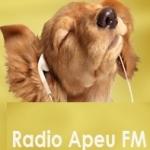 Logo da emissora Rádio Apeu 105.9 FM