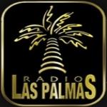 Logo da emissora Radio Las Palmas 91.1 FM