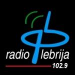 Logo da emissora Radio Lebrija 107.7 FM