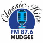 Logo da emissora Radio Classic Hits 87.6 FM
