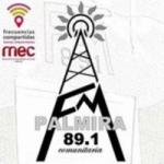 Logo da emissora Radio Comunitaria Palmira89.1  FM