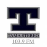 Logo da emissora Radio Tamá Stereo 103.9 FM