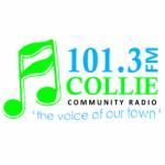 Logo da emissora Radio Colllie 101.3 FM