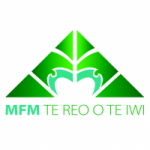 Logo da emissora MFM Radio 91.9