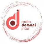 Logo da emissora Radio Domoni Inter 102.0 FM