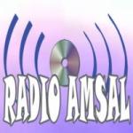 Logo da emissora Radio Amsal AM