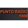 Radio Punto 1008 AM