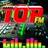 Rádio Top 103.1 FM