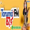 Rádio Tarumã FM