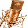 Web Rádio Salvador