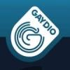 Radio Gaydar Radio