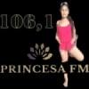 Rádio Princesa Do Jari