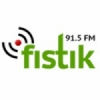 Radio Fistik 91.5 FM