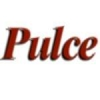 Radio Pulce 99.1 FM