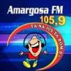 Rádio Amargosa FM