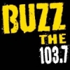 Radio KABZ 103.7 FM The Buzz