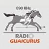 Rádio Guaicurus 890 AM