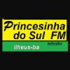Web Rádio Princesinha Do Sul