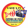 Rádio Espinha De Peixe