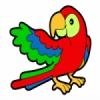 Rádio Papagaio Rapadura
