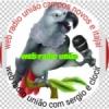 Rádio União CN