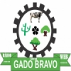 Rádio Sitio Gado Bravo