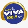 Rádio Viva 100.9 FM