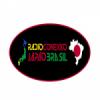 Rádio Conexão Japão Brasil