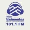 Rádio Unimontes 101.1 FM