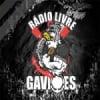 Rádio Livre Gaviões