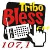 Rádio Tribo Bless FM