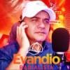 Rádio Evandio Radialista