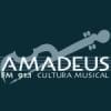 Radio Amadeus 91.1 FM