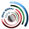 Ona Bitlles 107.0 FM