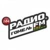 Radio Gomel 101.3 FM
