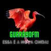 Rádio Guará 90 FM