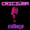 Criciúma Sertaneja Web Rádio