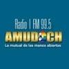Radio Amudoch 99.5 FM