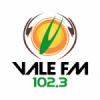 Rádio Vale 102.3 FM