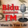 Rádio Bidu Kawasaki FM