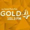 Radio Gold 101.3 FM