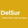 Radio DelSur 106.2 FM