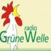 Güne Welle 103.0 FM