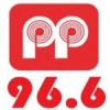 Radio Pepper 96.6 FM