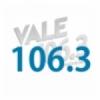 Radio Vale 106.3 FM