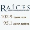 Radio Raices 95.1 FM