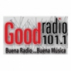 Radio Good 101.1 FM
